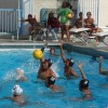 Boys water polo hopes to make CIF once again