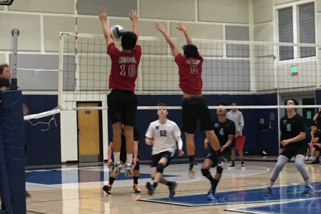 Boys Volleyball team enters CIF against the Windward Wildcats
